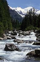 Europe/Italie/Val d'Aoste/Env de Cogne: Torrent