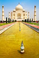 Iconic, ivory-white Taj Mahal marble mausoleum perspective with yellow basin water, in Agra, Uttar Pradesh, India