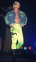 Sting 1993                                                                             Photo By John Barrett/PHOTOlink