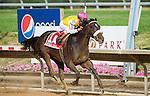Grace Hall, ridden by Javier Castellano, wins the Delaware Oaks at Delaware Park in Stanton, Delaware on July 14, 2012