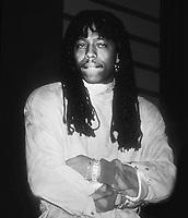 Rick James 1983 Photo By John Barrett/PHOTOlink