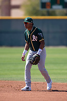 Oakland Athletics second baseman Alexander Campos (6) during a Minor League Spring Training game against the Chicago Cubs at Sloan Park on March 19, 2018 in Mesa, Arizona. (Zachary Lucy/Four Seam Images)