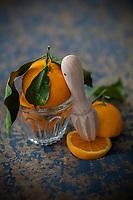 Europe,France, Europe, France, Corse (2B) Haute-Corse:Oranges de Corse bio// Europe, France, Europe, France, Corsica (2B) Haute-Corse: Organic Corsican oranges