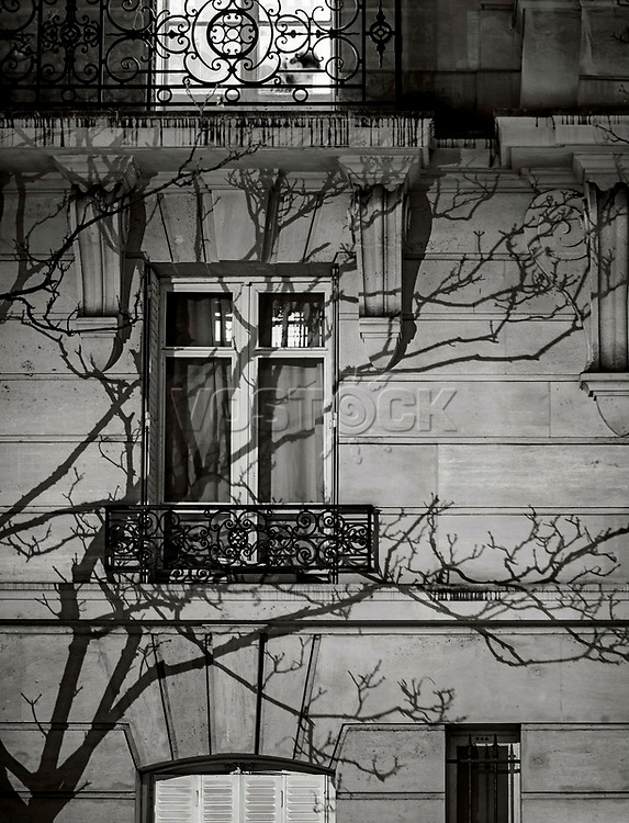 Paris, Tree Shadow, Baumschatten, Baum, 31.01.2014<br /> <br /> <br /> <br /> <br /> ***HIGHRES AUF ANFRAGE*** ***VOE NUR NACH RUECKSPRACHE***<br />  ***Keine Social_Media Nutzung***<br /> <br /> Engl.: Europe, France, Paris, Tree Shadow, shadows, trees, tree, window, house wall, facade, 31 January 2014<br /> ***HIGHRES ON REQUEST***PUBLICATION ONLY AFTER CONSULTATION WITH LAIF***<br /> ***No social media use***