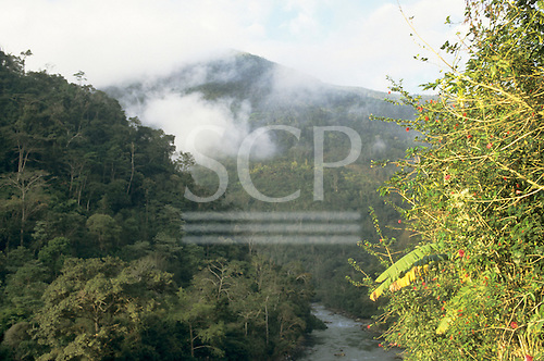 Peru. Cloud forest on the Peru to Bolivia border.