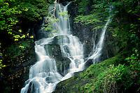 Torque Falls, Killarney National Park, Ireland.