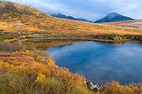 Tundra pond in the Kigluaik mountains on the Seward Peninsula, western Arctic, Alaska.