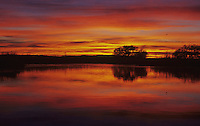 Pond at sunset, Starr County, Rio Grande Valley, Texas, USA