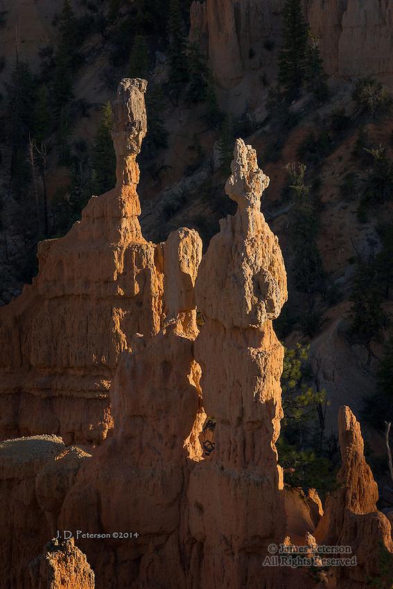 Fairyland Hoodoos, Bryce Canyon