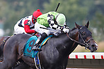 July 27, 2014: Valid, Orlando Bocachica up, wins the Gr. II Monmouth Cup Stakes at Monmouth Park in Oceanport, NJ.  Trainer is Marcus Vitali, owner is Crossed Sabres Farm. ©Joan Fairman Kanes/ESW/CSM