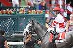 Winslow Homer with Robby Albarado up wins The Curlin at Saratoga Rack Course in Saratoga Springs NY 8.1.2010
