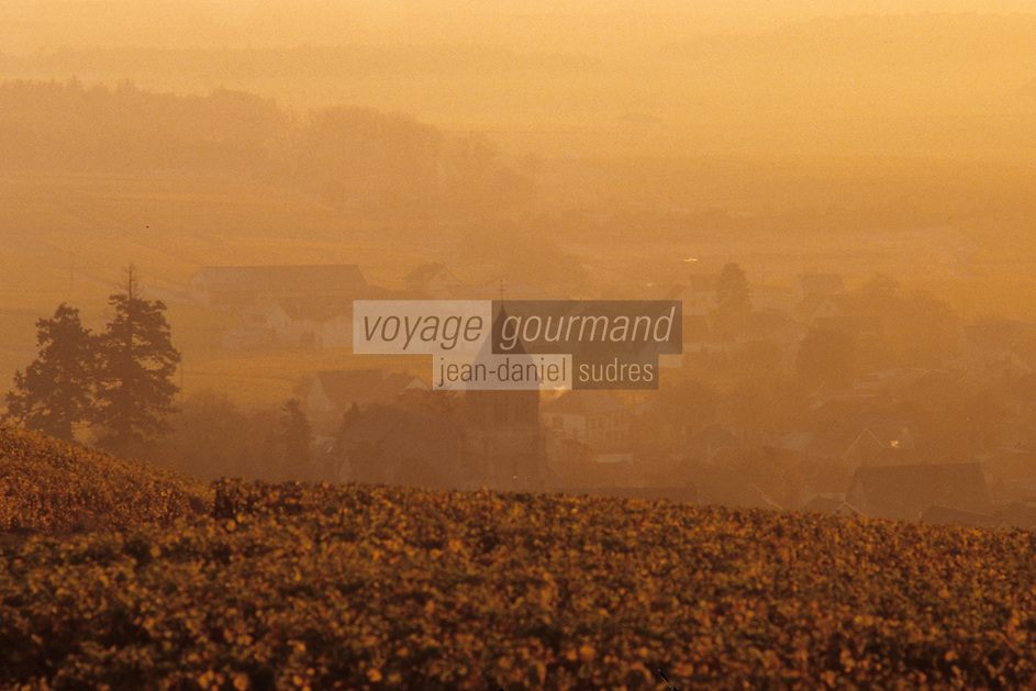 Europe/France/Champagne-Ardenne/51/Marne/Oger: Le village et le vignoble champenois