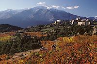 """Europe/France/Languedoc-Roussillon/66/Pyrénées-Orientales/Arboussols: Village du Conflent au milieu de ses vignes AOC """"Corbières du Rousillon"""" et AOC """"Cotes du Roussillon"""". A l'arrière plan, le mont Canigou"""