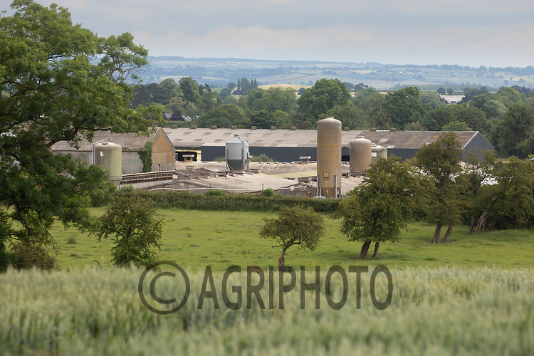 24-6-2021 Pig buildings in the North Yorkshire countryside.<br /> ©Tim Scrivener Photographer 07850 303986<br />      ....Covering Agriculture In The UK....