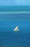 Lagon de Rodrigues.  Barque de pêche dans le lagon de Rodrigues..Sailing boat on the Rodrigues lagoon..