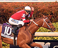 HALLANDALE, FL - JANUARY 27: Betting Favorite Gun Runner #10, ridden by Florent Geroux,and owned by Winchell Thoroughbreds LLC and Three Chimneys Farm and trained by Steve Asmussen wins the $16 Million Pegasus World Cup Invitational, The World's Richest Thoroughbred Horse Race At Gulfstream Park on January 27, 2018 in Hallandale, Florida <br /> <br /> People:  Gun Runner, Florent Geroux