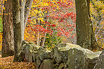 Stone walls and rural fields in Minuteman National Park in Concord, Massachusetts, USA