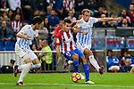 """Atletico de Madrid's player Ángel Martín Correa and Malaga CF Sergio Paulo """"Duda"""" Barbosa during a match of La Liga Santander at Vicente Calderon Stadium in Madrid. October 29, Spain. 2016. (ALTERPHOTOS/BorjaB.Hojas)"""
