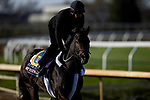 November 5, 2020: Wet Your Whistle, trained by trainer Michael J. Trombetta, exercises in preparation for the Breeders' Cup Turf Sprint at  Keeneland Racetrack in Lexington, Kentucky on November 5, 2020. Alex Evers/Eclipse Sportswire/Breeders Cup