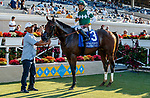 DEL MAR, CA  AUGUST 7:  #3 Pappacap, ridden by Joe Bravo, in the winners circle after winning the Best Pal Stakes (Grade ll) on August 7, 2021 at Del Mar Thoroughbred Club in Del Mar, CA.(Photo by Casey Phillips/Eclipse Sportswire/CSM)