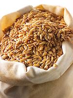 Organic Golden linssed  seeds. Stock Photos