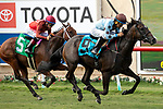 DEL MAR, CA  SEPTEMBER 2: #9 Yesterdayoncemore, ridden by Victor Espinoza, in the stretch of the Del Mar Juvenile Fillies Turf on September 2, 2019, at Del Mar Thoroughbred Club in Del Mar, CA. ( Photo by Casey Phillips/Eclipse Sportswire/CSM)