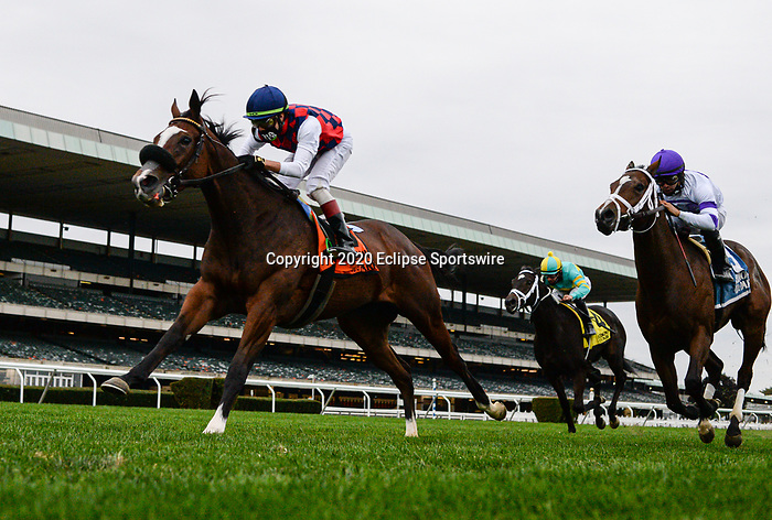 October 11, 2020: Royal Approval, ridden by Irad Ortiz Jr., wins the 2020 running of the G3 Matron S. at Belmont Park in Elmont, NY. Sophie Shore/ESW/CSM