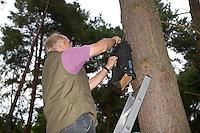 Fledermaus-Nistkasten, Nistkasten für Fledermaus, Fledermauskasten, Fledermaus-Kasten, Spezialkasten für Fledermäuse wird von Naturschützer kontrolliert und gereinigt, Fledermausschutz, Fledermaus-Schutz