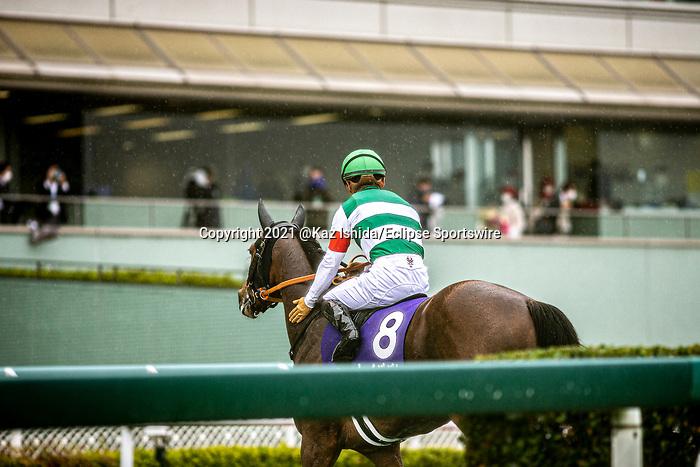 TAKARAZUKA,JAPAN-APR 4: Lei Papale,ridden by Yuga Kawada,after winning the Osaka Hai at Hanshin Racecourse on April 4,2021 in Takarazuka,Hyogo,Japan. Kaz Ishida/Eclipse Sportswire/CSM