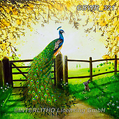 Simon, REALISTIC ANIMALS, REALISTISCHE TIERE, ANIMALES REALISTICOS, innovativ, paintings+++++RiverPeacock_AFreeKingdom,GBWR321,#a#, EVERYDAY