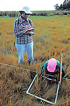 Counting Types and Quantity of Grass Earthwatcher and Sharon Dewing
