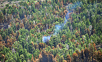 Bear fire of June1, 2011
