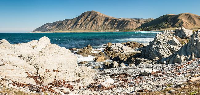 Remote rocky east coast at Tora near Martinborough, Wellington Region, North Island, New Zealand, NZ