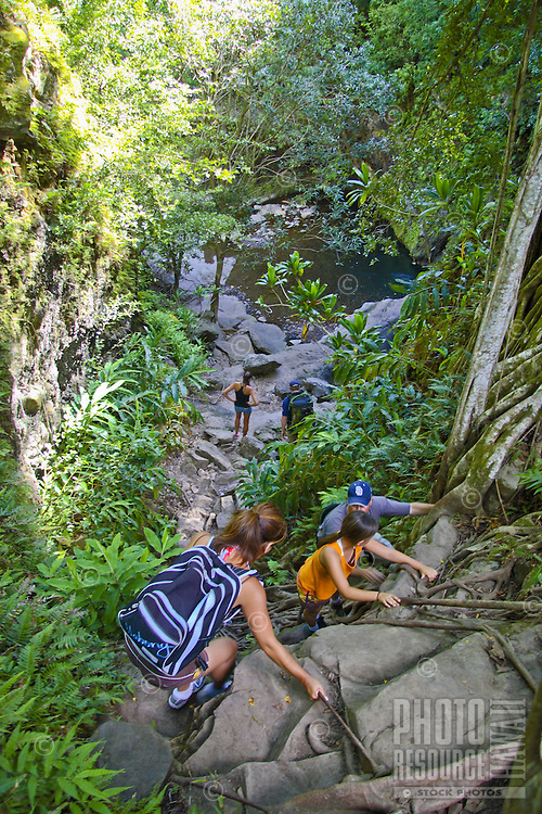 Hikers descend with ropes to a lower pool along the lower Makamakaole trail. Resting on the lower northern face of the West Maui Mountains near the coast, the trail offers the adventurer a jungle, bamboo forests, streams, pools and more.