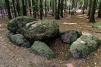 Großsteingrab bei Waldhalle im Nationalpark Jasmund auf der Insel Rügen, Mecklenburg-Vorpommern, Deutschland