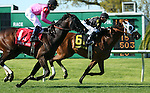 March 29, 2014: on Louisiana Derby Day at the Fairgrounds Race Course in New Orleans, LA. Mary M. Meek/ESW/CSM; Skyring and jockey Joseph Rocco Jr. (on rail) win the Mervin Muniz Jr. Memorial Handicap over Amira's Prince and Mike Smith.