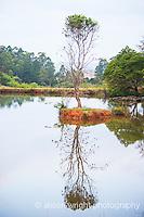Milwane Nature Reserve
