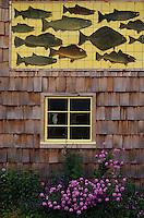 USA/Etats-Unis/Alaska/Gustavus : Fronton et façade d'une fumerie de saumon artisanale