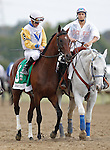 September 21, 2013.  Pennsylvania Derby contender Java's War, trained by Barclay Tagg, Julien Leparoux up. Will Take Charge, trained by D. Wayne Lukas and ridden by Luis Saez, wins the Pennsylvania Derby at  Parx Racing, Bensalem, PA.  ©Joan Fairman Kanes/Eclipse Sportswire