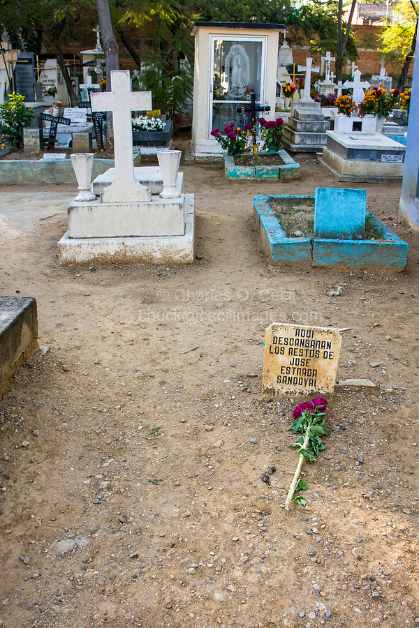 """Matatlan, Oaxaca; Mexico; North America.  Day of the Dead Celebration.  Poverty Amid Wealth.  A single stalk of flowers and a broken headstone inscribed """"Here rest the remains of Jose Estrada Sandoval"""" mark a poor grave in an area of other, more elaborate graves in the San Miguel Cemetery of Oaxaca."""