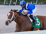 January 02, 2021:  #5 Mutasaabeq with jockey Luis Saez    on board, wins the Mucho Macho Man $100K Stakes at Gulfstream Park, On January 2nd, 2021,  in Hallandale Beach, Florida. Liz Lamont/Eclipse Sportswire/CSM