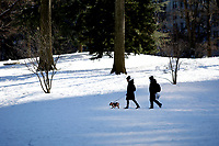 NEW YORK, NEW YORK - FEBRUARY 21: A couple walks whit a dog in Central Park covered by snow and ice  on February 21, 2021 in New York City. The big apple waits this monday the last snowfall before a midweek warm up.  (Photo by John Smith/VIEWpress via Getty Images)