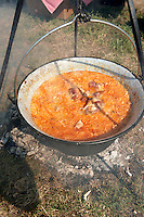 Szekely cabbage (Szekely Kaposzta) being cookied in bogracs at the Parika festival. Kalocsa, Hungary.