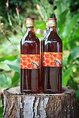 """Production de miel de Christelle Appaganou, apicultrice à Bourail, commercialisé sous la marque """"Les ouvrières de la Taraudière"""""""