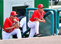 29 May 2011: Washington Nationals pitching coach Steve McCatty (left) and manager Jim Riggleman watch from the steps of the dugout during a game against the San Diego Padres at Nationals Park in Washington, District of Columbia. The Padres defeated the Nationals 5-4 to take the rubber match of their 3-game series. Mandatory Credit: Ed Wolfstein Photo