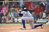 New York University Violets second baseman Ryan McLaughlin (21) squares to bunt during a game against the Edgewood Eagles on March 14, 2017 at Terry Park in Fort Myers, Florida.  NYU defeated Edgewood 12-7.  (Mike Janes/Four Seam Images)