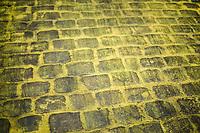 "the Yellow Brick Road<br /> <br /> ""Le Grand Départ"" <br /> 104th Tour de France 2017 <br /> Team Presentation in Düsseldorf/Germany"