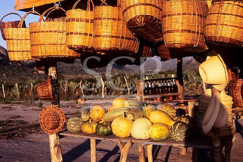 Bahia, Brazil. Roadside rural market stall selling baskets, squash and dende palm oil.