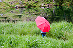Young child with red umbrella walking along Maroon Lake, Aspen, Colorado.