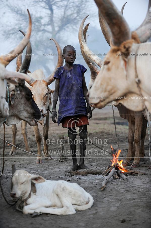 Afrika SUED-SUDAN  Bahr el Ghazal region , Lakes State, Dinka Hirten mit Zeburindern im cattle camp  | .Africa SOUTH SUDAN  Bahr al Ghazal region , Lakes State, Dinka shepherd with Zebu cow in cattle camp